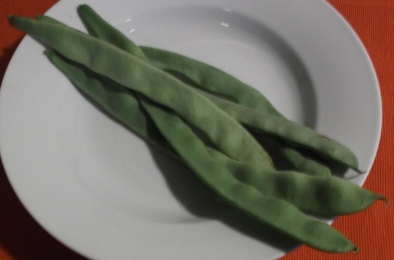 Flat_beans_raw